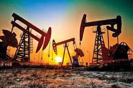 कच्चे तेल का दाम उचित स्तर पर रखने में अहम साबित हो सकता है रूस: भारत