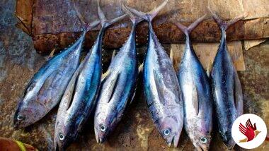 Bengal Government Starts Selling Fish Online To Beat Price Rise Amid Lockdown