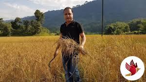 Assam man pledges 4 acre-land to build coronavirus hospital