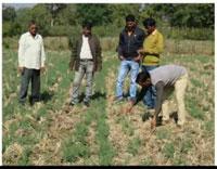 अब बालाघाट के किसान हुए हाईटेक, ऑनलाईन प्राप्त कर रहे प्रशिक्षण