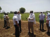 कलेक्टर- एसपी ने साल्याखेड़ी में किया खेतों का निरीक्षण