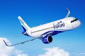 घरेलू विमानन सेवाओं की वृद्धि धीमी: इंडिगो