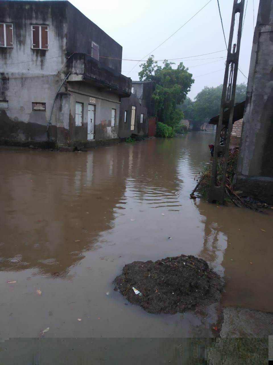 માણાવદરના આંબલીયા ગામે 3 ઇંચ વરસાદ ખાબકતા ઠેર-ઠેર પાણી