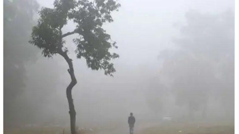 જામનગરમાં લઘુતમ તાપમાન 2 ડિગ્રી ઘટ્યું, પારો 14 ડિગ્રી
