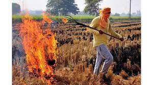 प्रदूषण पर लगाम: किसान उत्साहित